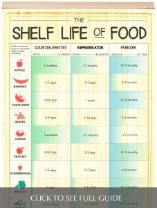 The Shelf Life of Food thumb