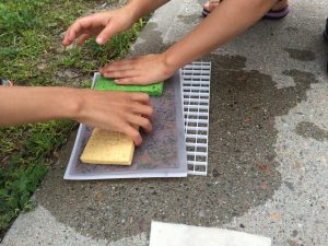 Two sets of hands working on turning paper pulp into their own piece of paper.