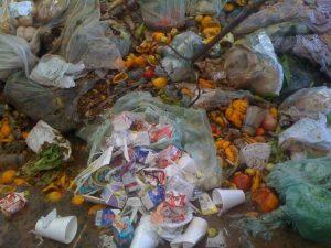 Contaminated food scraps on the tip floor.