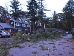 Houses with trees fallen down in front.